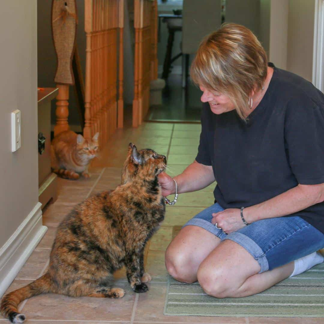 Purrfect Pet Sitting Specific Needs